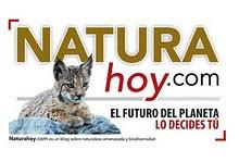 NaturaHoy - Espanha