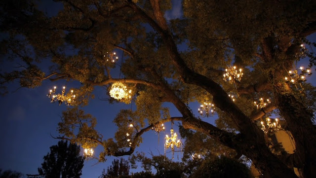 Adam Tenenbaum's chandelier tree