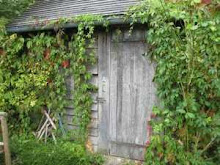 la cabane du potager