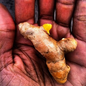 Science Confirms Turmeric As Effective As 14 Drugs
