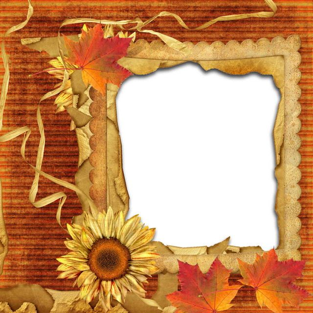 Beautiful Frames Pictures | Cool Frames | Ready Made Photo frame ...