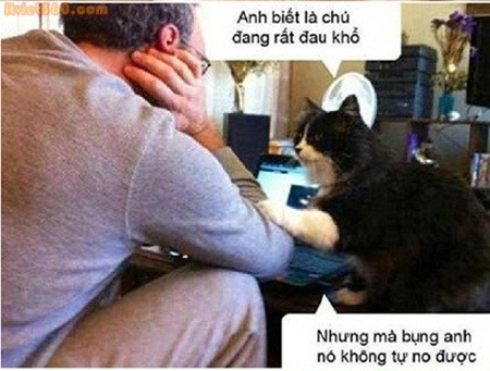 Những hình ảnh động vật hài hước nhất