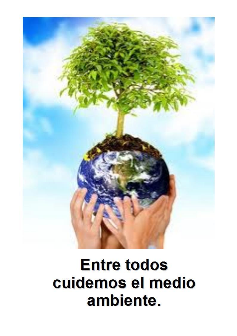 """Escuela Nº 21 D.E.15º """"J. J. Núñez"""": Problemas ambientales"""
