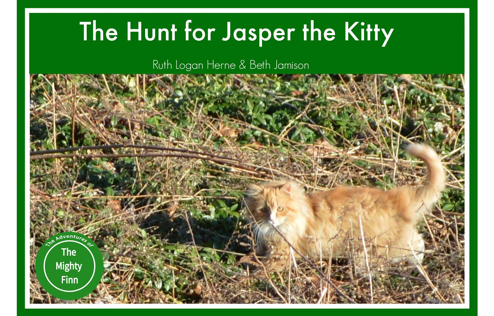 The Hunt for Jasper the Kitty