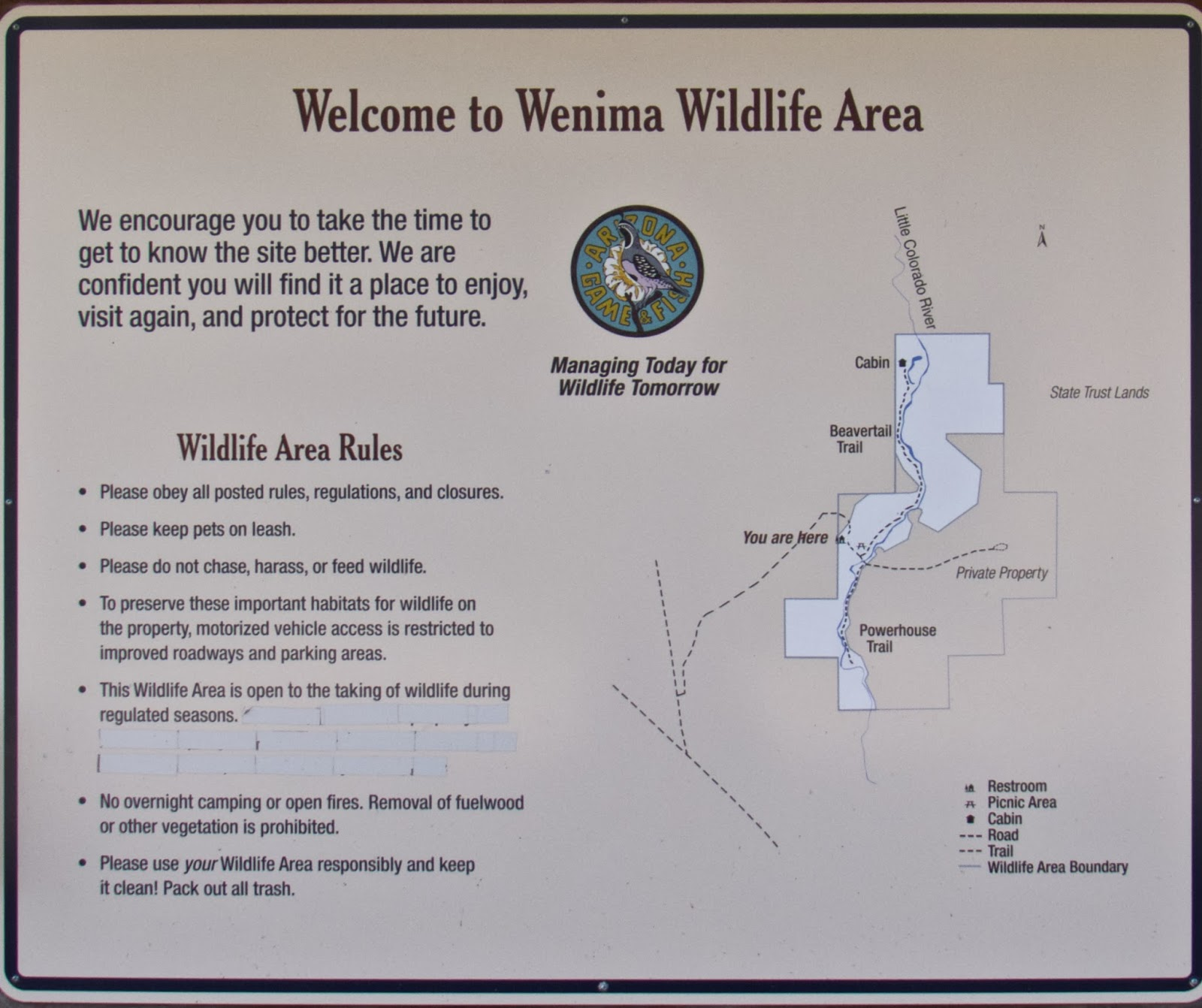 at my usual birding rate of one mile per hour we managed to spend about four hours at this site first we walked the trail into the meadow and back total