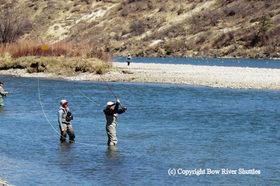 Bow River Canada Fly Fishing Download