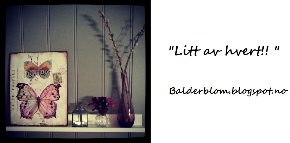 Balderblom