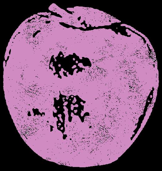 りんご2(フルーツ)