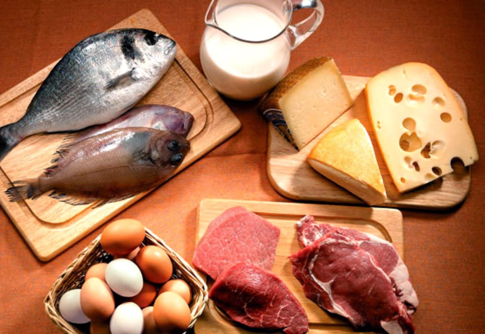 Quais alimentos tem mais proteínas?