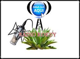 RADIO KOKUY
