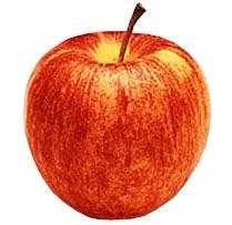 Tipos de maçã e algumas características