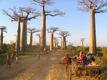 Madagascar mon pays