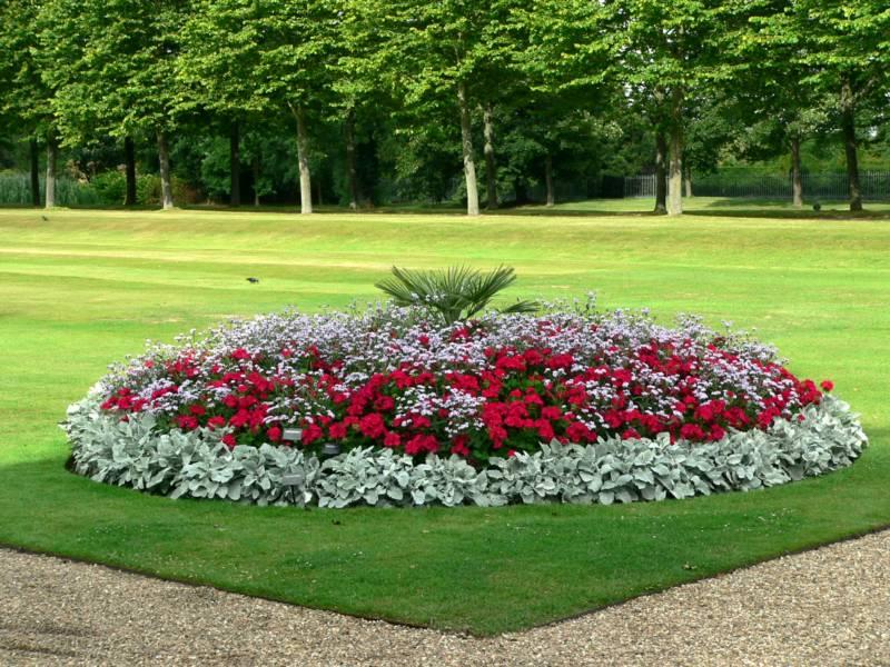 Arte y jardiner a arriates ornamentales en el jard n for Modelos de jardines sencillos