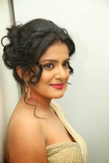 Vishakha Singh at rowdy fellow audio 032.jpg