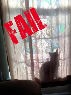 Cat Fail hides window