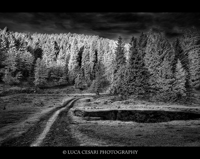Black and White Photography Seen On www.coolpicturegallery.us