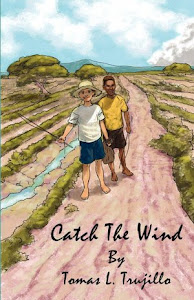 Buy Catch The Wind On Amazon