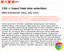 CSS Input font size selection