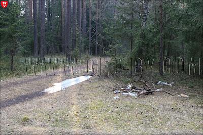 Свалка мусора в лесу у Ракова