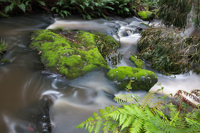 long exposure of water in sheoak creek