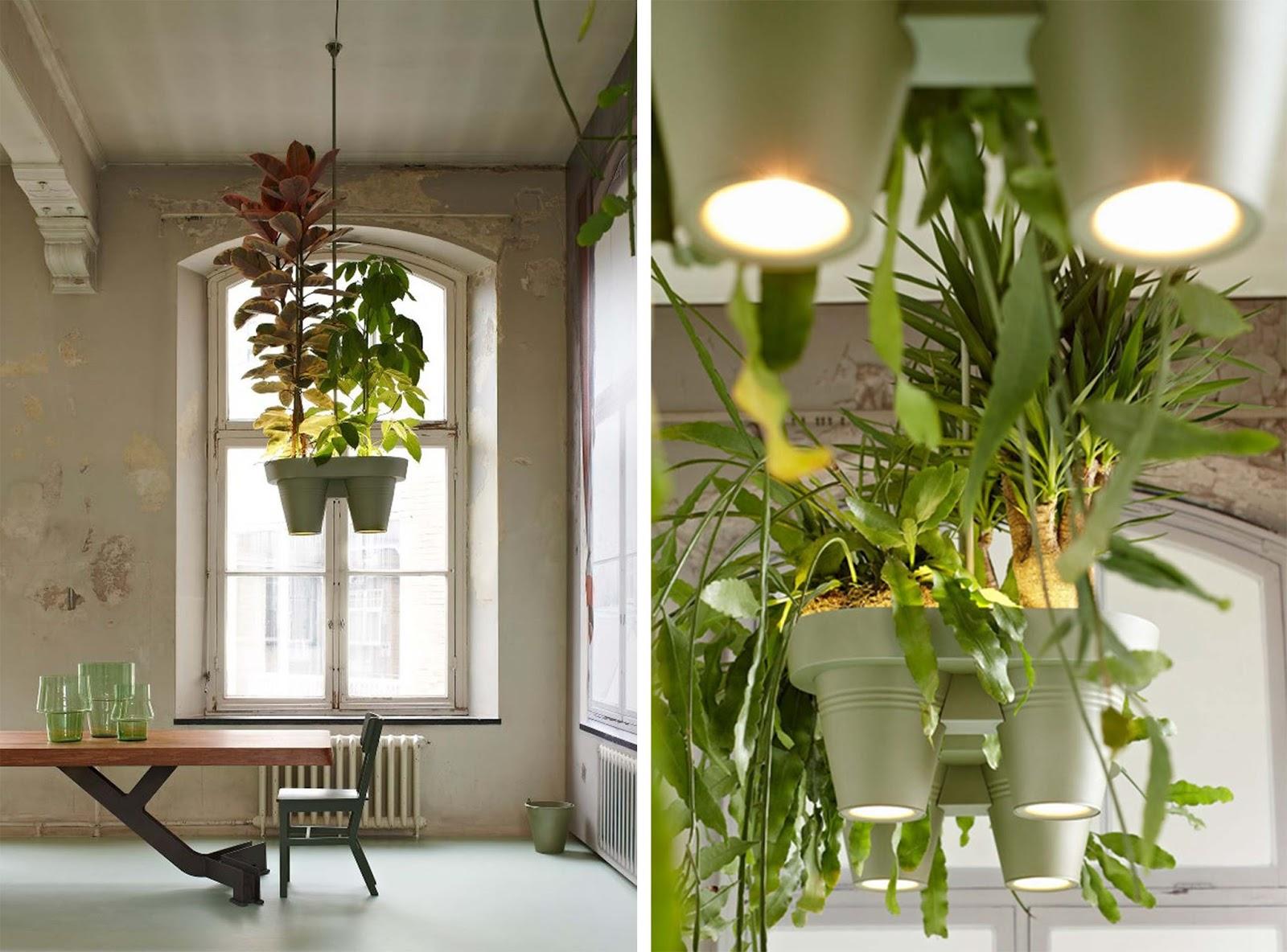 Roderick vos progetta vasi sospesi con illuminazione e for Vasi sospesi