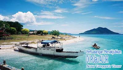 Pertualangan Menakjubkan Di Pulau Alor NTT
