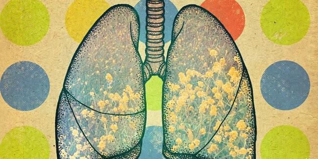Kesehatan : Mengenal Kanker Paru -Paru Mesothelioma