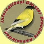 The International Gloster Breeders Association