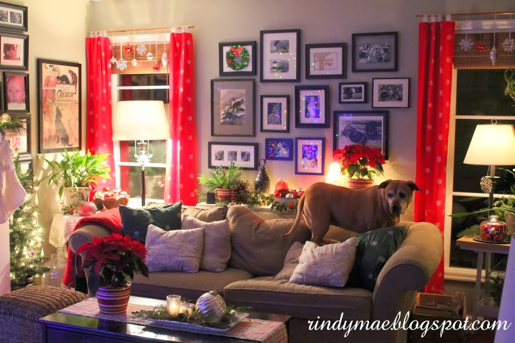 Rindy mae christmas in the living room 2013 for Living room 102