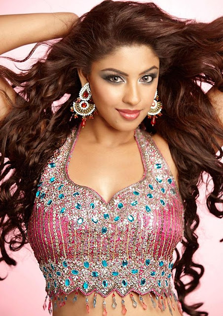 Richa Gangopadhyay Spicy Photoshoot