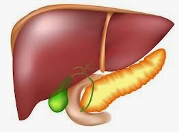 Pancreatitis - Causes and Symptoms