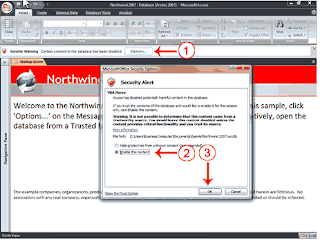 ms access 2007 tutorial