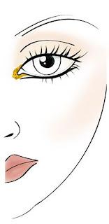 Laura Mercier Face Chart