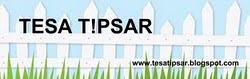 Tesa Tipsar