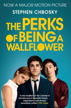 Perks of Being a Wallflower Book