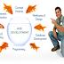 offer a wide range of web application developments in Delhi,