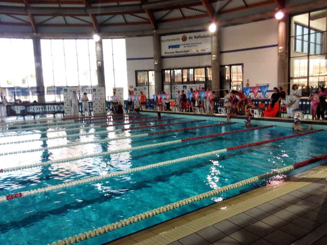 Gran xito del campeonato axa de nataci n axa seguros espa a for Piscina parquesol