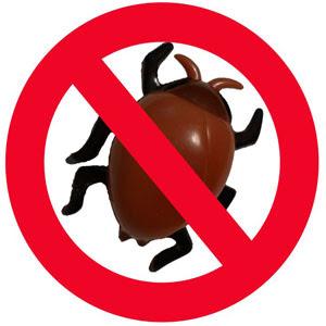 Eliminar cucarachas de forma natural y casera