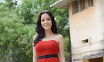 Kristina Akheeva dazzling pics at Gaali Patam-thumbnail