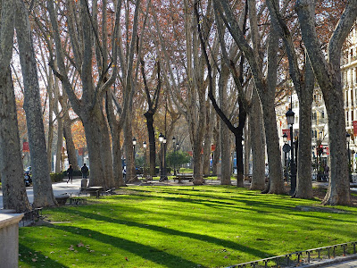 Paseo del Prado – On Our Way to the Prado