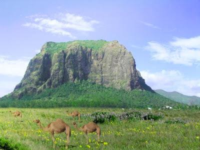 tutorial photoshop - membuat padang rumput unta