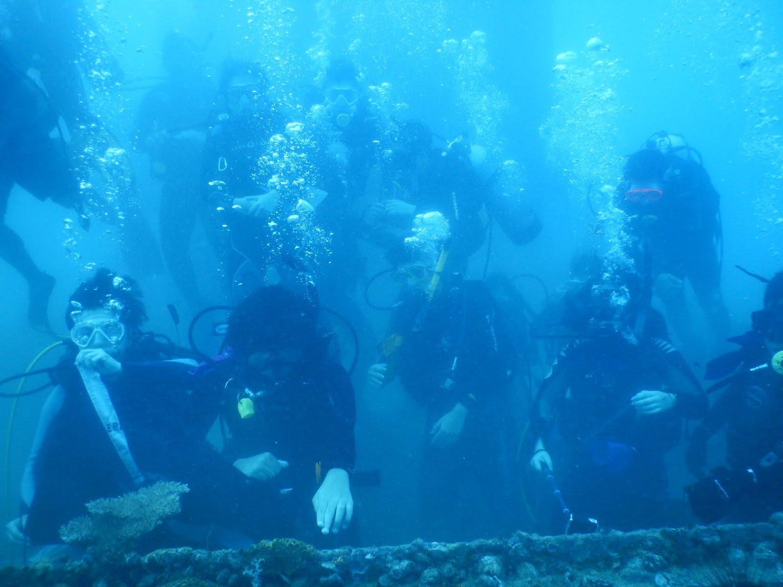 Paket Diving 1d Wonderful Belitung Liburan Murah Kualitas Premium Trip Pulau Pelangi 2d 1n Non Dive Detail Package