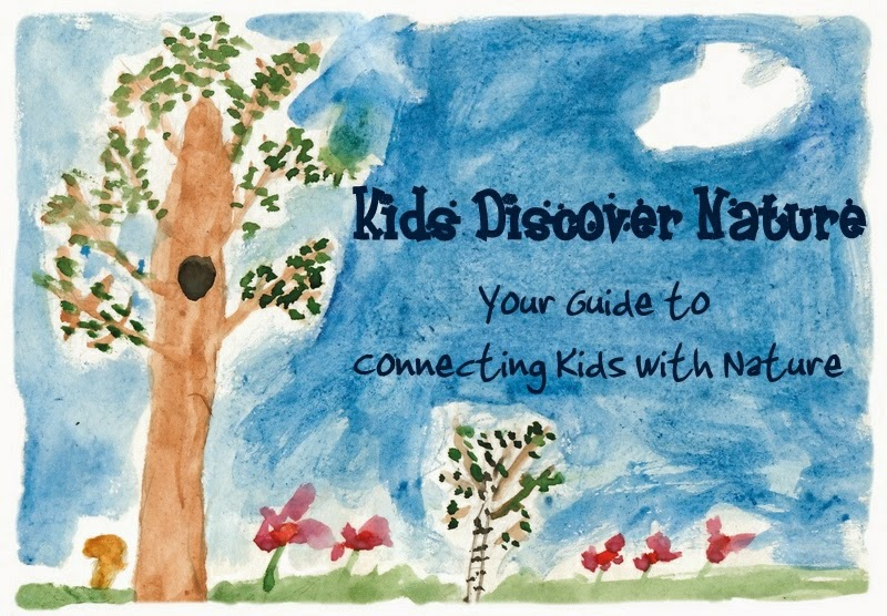 Kids Discover Nature