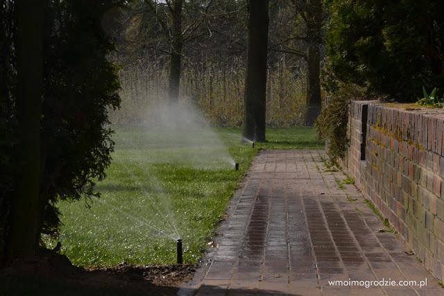 automatyczne podlewanie trawnikow