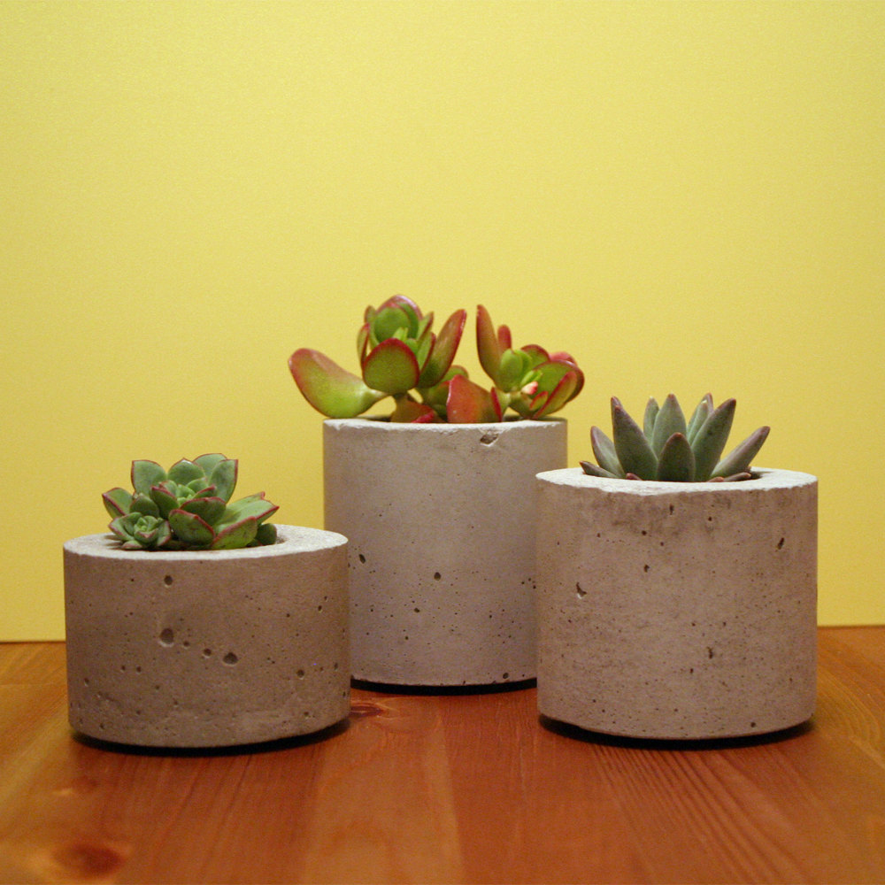 The collectionaire growing into spring - Casting concrete planters ...