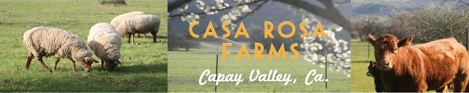Casa Rosa Farms