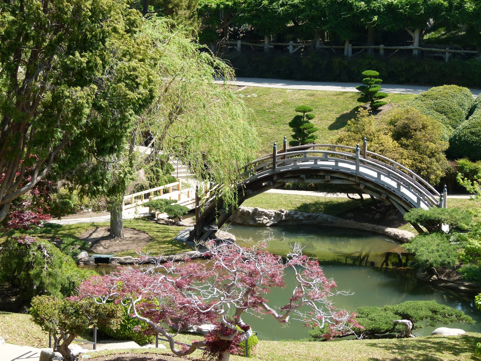 Things To Do In Los Angeles Classic Huntington 39 S Japanese Garden Back