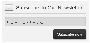 Newsletter Form Style 2