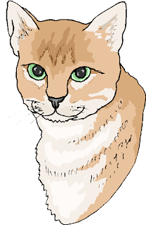 Brown White Cat Free Animal Clipart