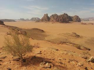 Paisaje de Wadi Rum